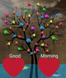 Good Morning Images Tree