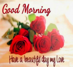 Love Quotes For My Love Adorable Good Morning Message To My Love & Images With Quotes  Greetings1