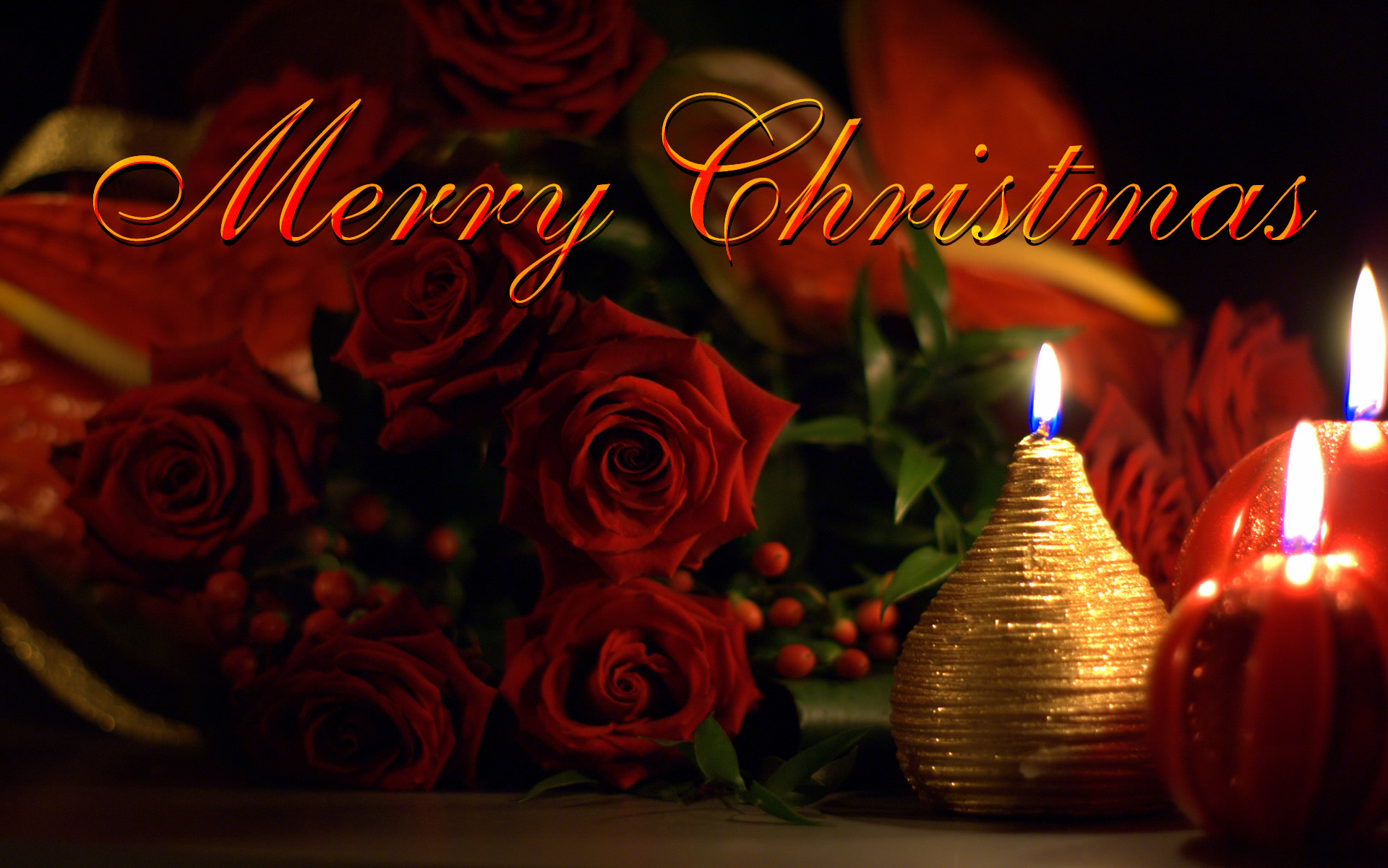 beautiful christmas photo images with rose