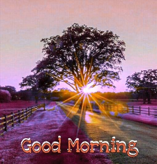 beautiful good morning wallpaper 156