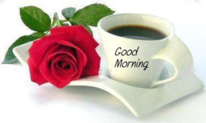 cute good morning image with a cup of tea and red rose