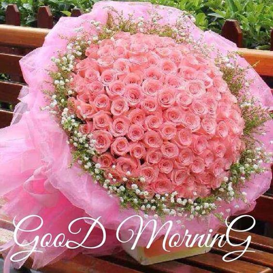 good morning beautiful images with flowers photos