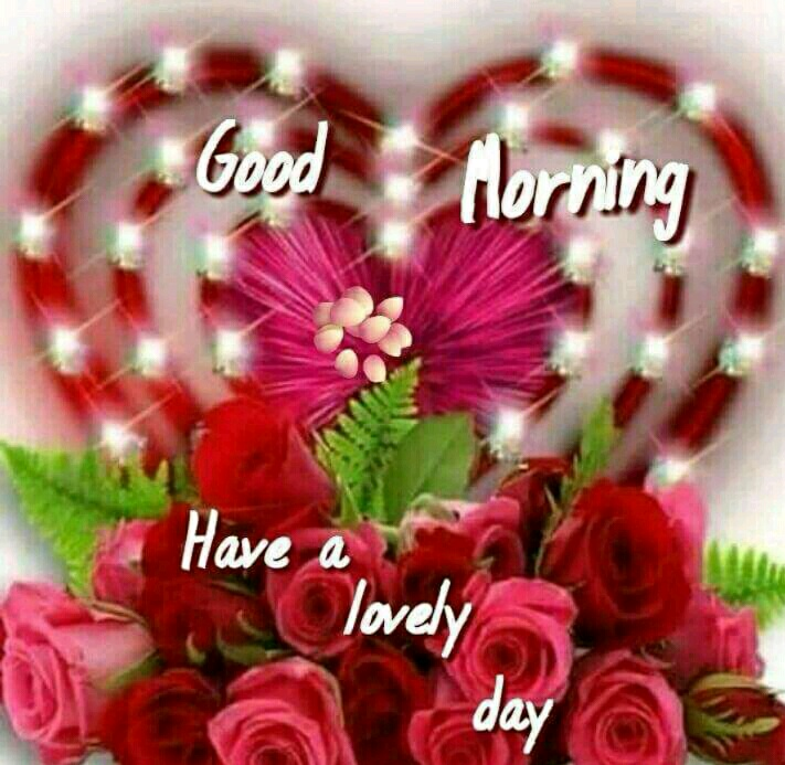 Good morning have a lovely day gif