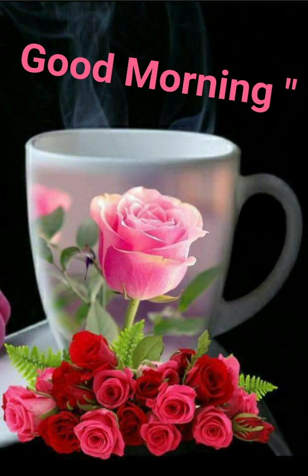 latest good morning wallpaper free download