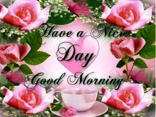 Beautiful rose with good morning message - Greetings1