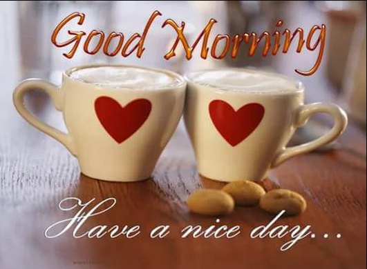 Good Morning Images Photo - Greetings1