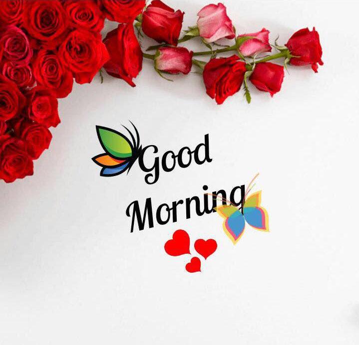 Free Good Morning Images Beautiful Good Morning Images Greetings1 Com